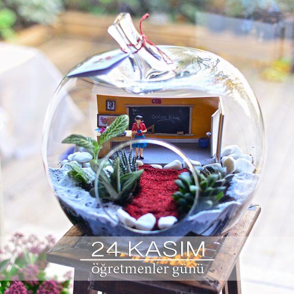 Öğretmenim - Temalı Terrariumlar -  Lunlun Çiçek