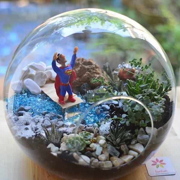 Superman - Temalı Terrariumlar -  Lunlun Çiçek
