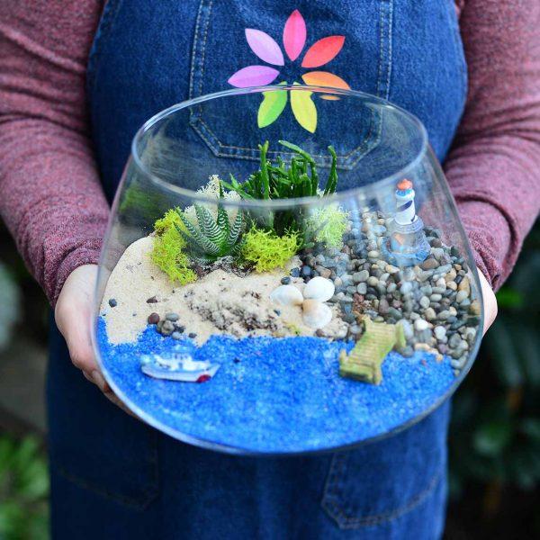 Huzurlu Deniz - Temalı Teraryum - Lunlun Çiçek