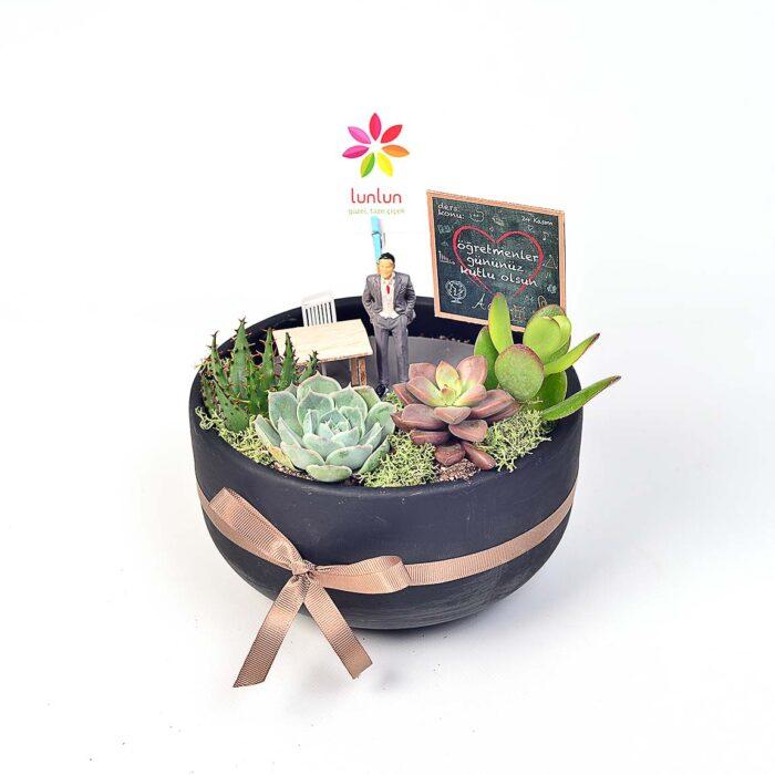 Teacher - Öğretmenime Özel - Lunlun Çiçek