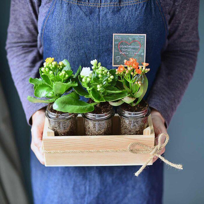 Çiçekli Üçlü - Öğretmenime Özel - Lunlun Çiçek