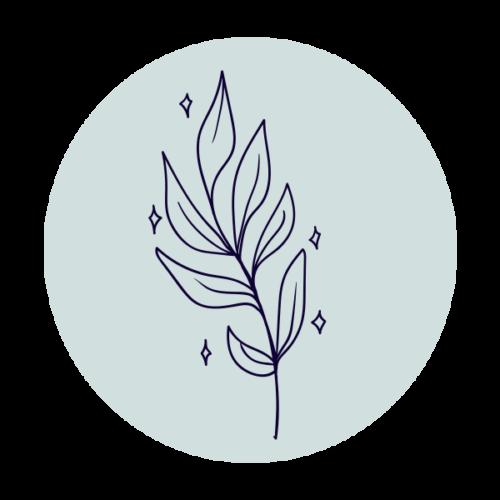 Saksılı Bitkiler